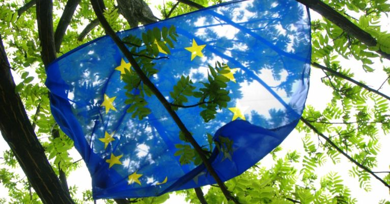 EU flag in trees by Niccolo Caranti