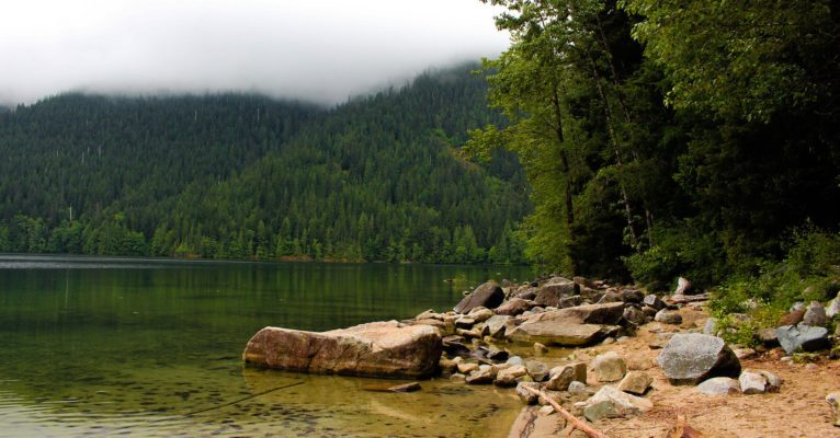Lake shores