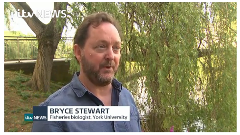 Bryce Stewart interview ITV