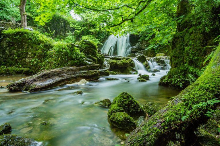 Environmental Principles In The Environment Bill Brexit